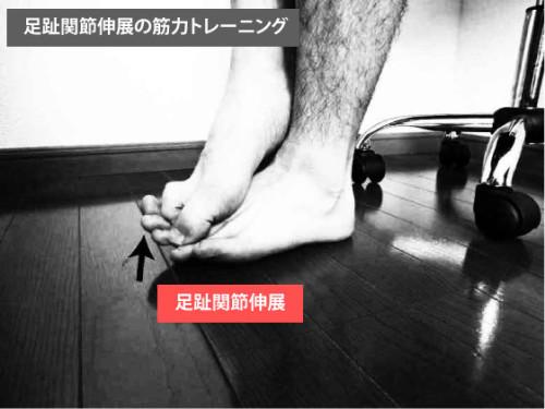 筋トレ|足趾背屈