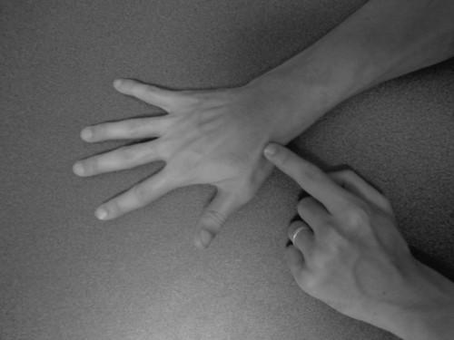 長母指伸筋
