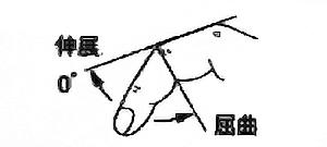 手指PIP関節屈曲・伸展の関節可動域(正常値)