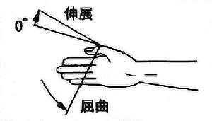 母指IP関節屈曲・伸展2の関節可動域(正常値)