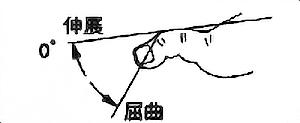 足趾DIP関節屈曲・伸展