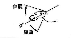 足趾MTP関節屈曲・伸展