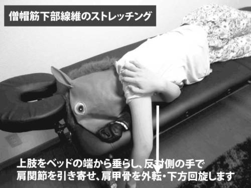 僧帽筋下部線維のストレッチング