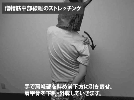 僧帽筋中部線維のストレッチング