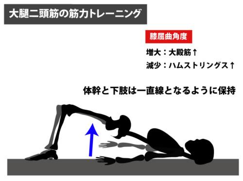 大腿二頭筋の筋力トレーニング