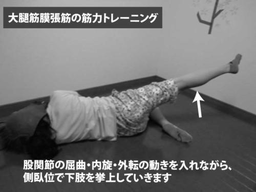 大腿筋膜張筋の筋力トレーニング
