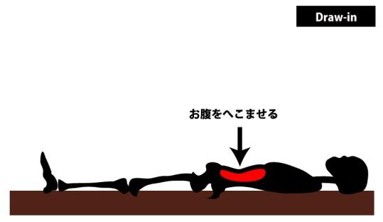 Draw-in|腹横筋の筋トレ