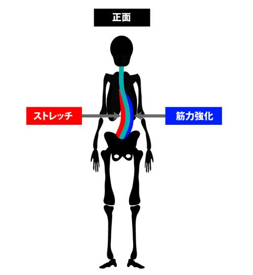 姿勢矯正の原理