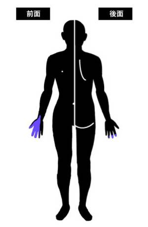 正中神経の支配領域