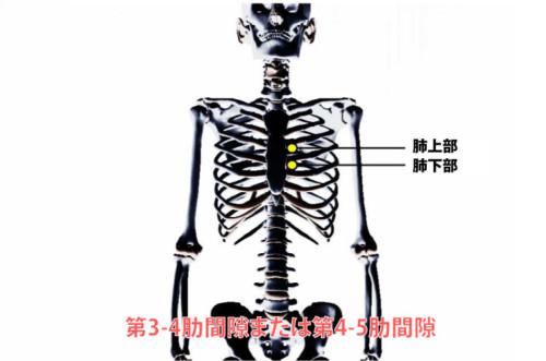 肺の圧痛点