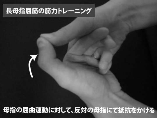 長母指屈筋の筋力トレーニング