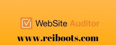 Website Auditor 4.40.3 Crack with Registration key Download