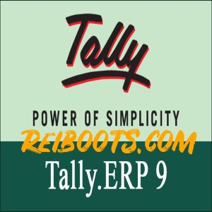 Tally ERP 9.6.5.2 Crack With Activation Key Free Download