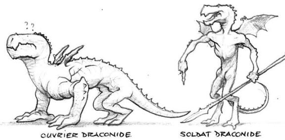 draconides : ouvrier et soldat