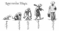 Pidapi V7 et Darwin: l'évolution de la grenouille Pidapi