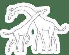 Communication non violente - Girafes