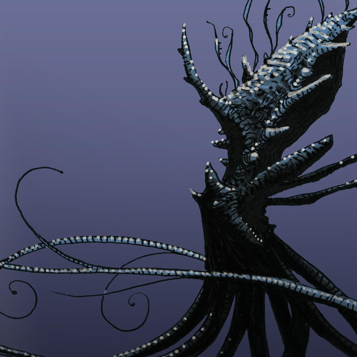 Pieuvre-Kraken II - détail