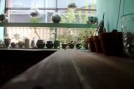Sneak peek of an upcoming post on the Lonsdale St. Traders. Sweet Bones Gallery