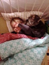 Reid's bed companion again