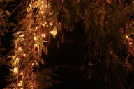 Share fairy lights 3