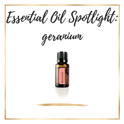 Essential Oil Spotlight : Geranium