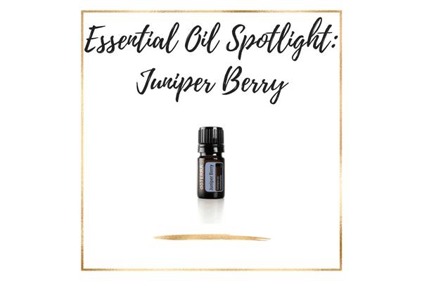 Essential Oil Spotlight_ juniper berry