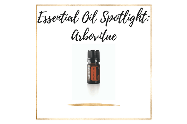 Essential Oil Spotlight: doTERRA Arbovitae