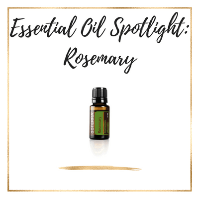 Rosemary Essential Oil Uses & Recipes