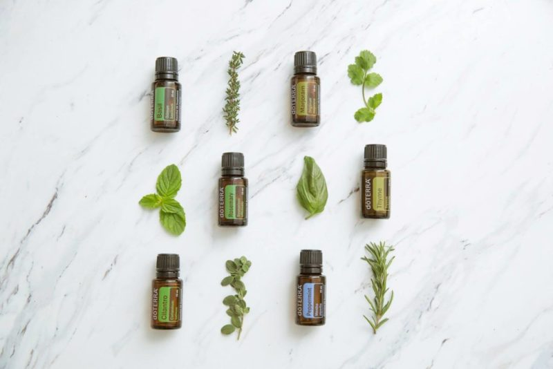 basil herb essential oils