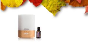 fall essential oil diffuser blends
