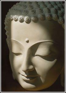 Meditation Reveals…