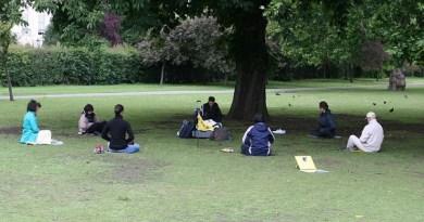 Sesión de Reiki grupal para la sanación a distancia