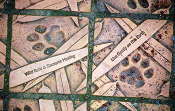 Wild Reiki and Shamanic Healing Paw Print Tile at Woodland Park Zoo www.reikishamanic.com