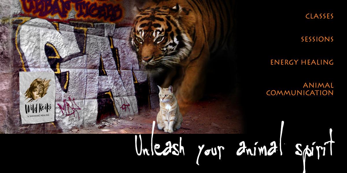 Animal Session Testimonials | Wild Reiki and Shamanic Healing
