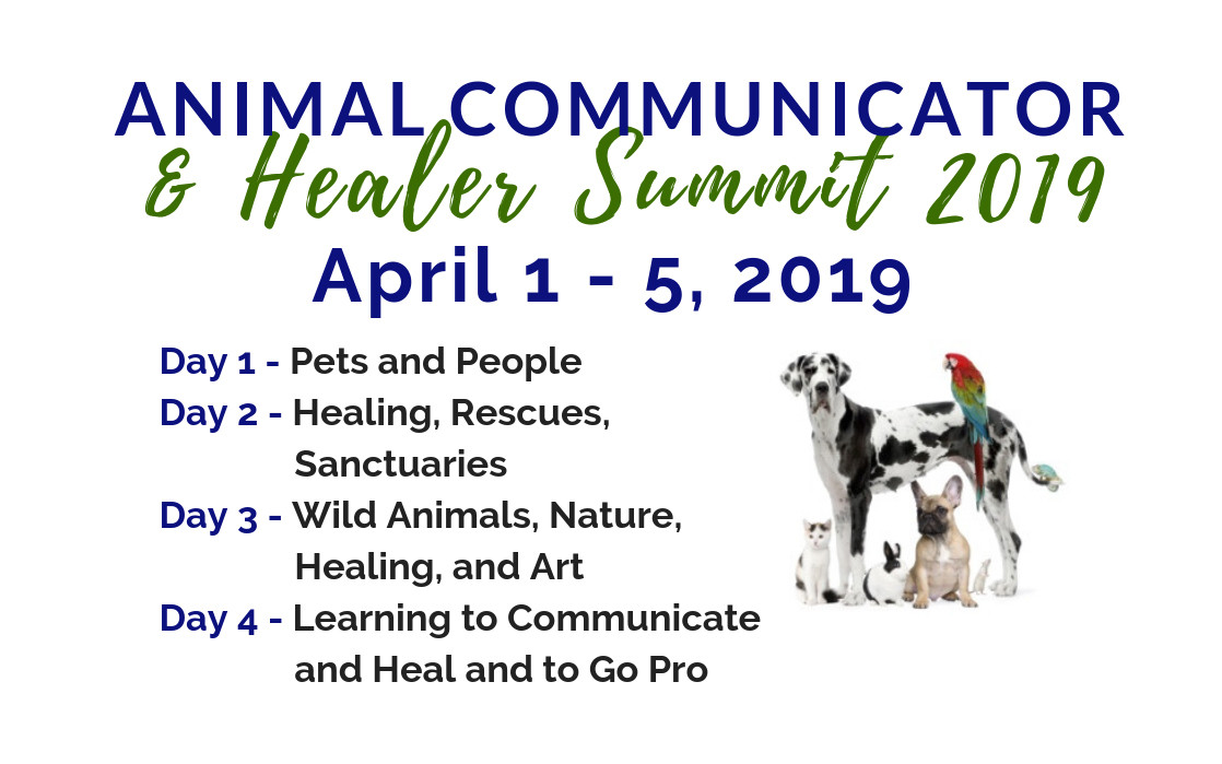 An Invitation To The 2019 Animal Communicator And Healer Summit