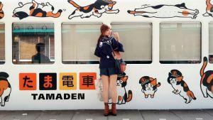 เที่ยวสถานีคิชิ จ.วากายาม่า พบกับความน่ารักของแมวนายสถานี ทามะ และ นิทามะ