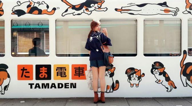 Nekko Trip เยี่ยมแมวนายสถานีทามะ ที่จ.วากายาม่า Cat Station Master at Wakayama
