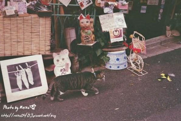 [東京] 貓咪陪伴的可愛小鋪,ねんねこ家