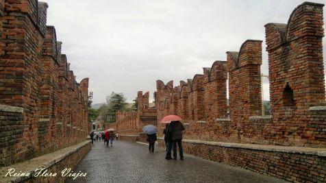 Verona6