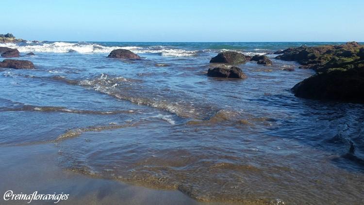 No más plásticos en nuestros océanos