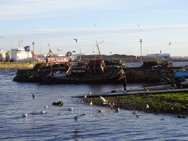 Galway a orillas del río Corrib
