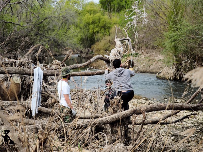 Voluntarios limpiando el río Jarama