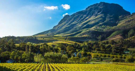 saisie terres fermiers blancs Afrique Sud commencé