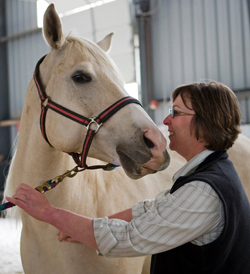 Stefanie Reinhold and a client horse