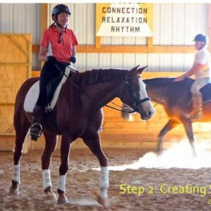 horse relaxation suppling