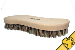 stiff hoof brush