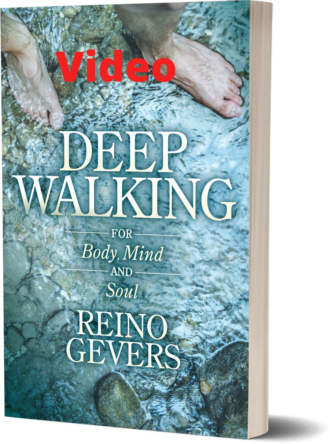 Deep Walking- Video