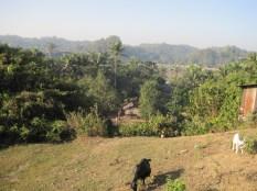 Zinamanaung Paya