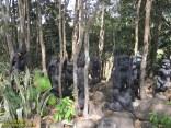 popa mountain park