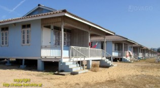 ddpc-bungalow-25383-717a9b60c381e4f1f94f6cc2155f074358c0539d